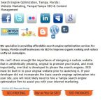 Tampa-search-engine-optimization-Florida