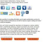 Tampa-search-engine-optimization-Florida